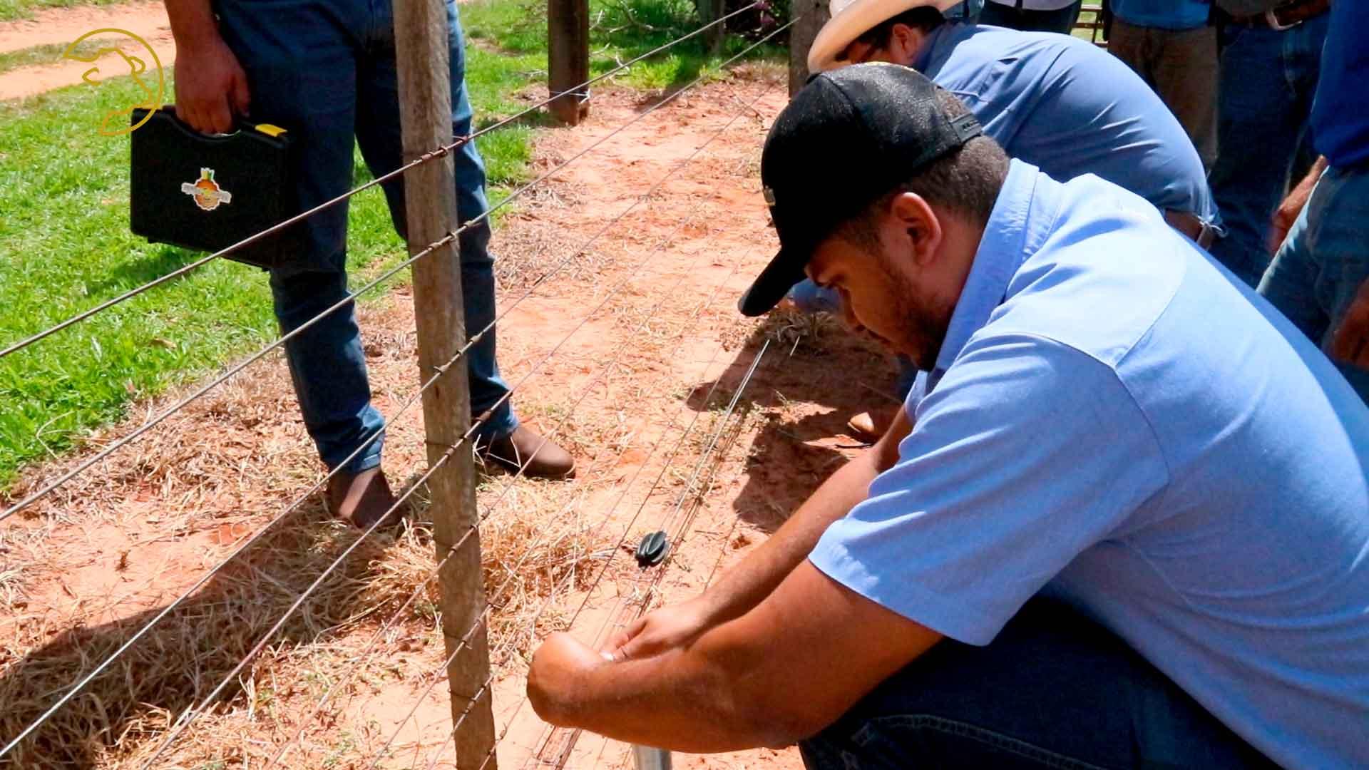 Dia de campo instalação de cerca elétrica